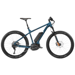 BGM Bike E-Roxter 8.0 Plus XL/null