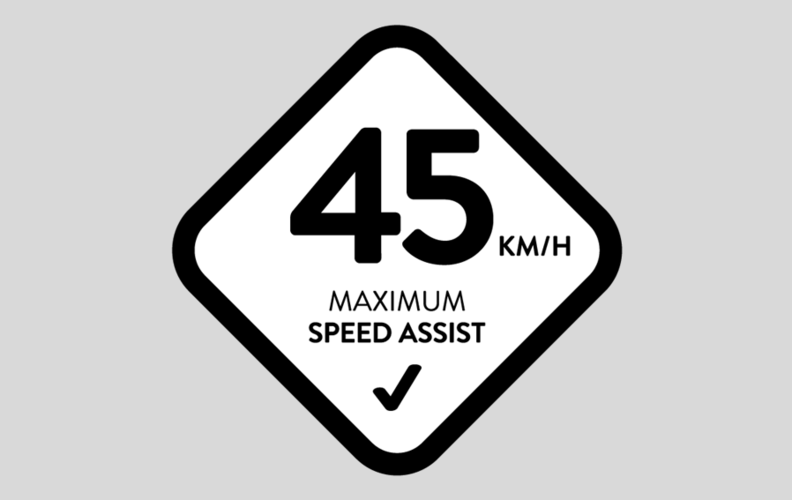 45Km/h Maximum Speed