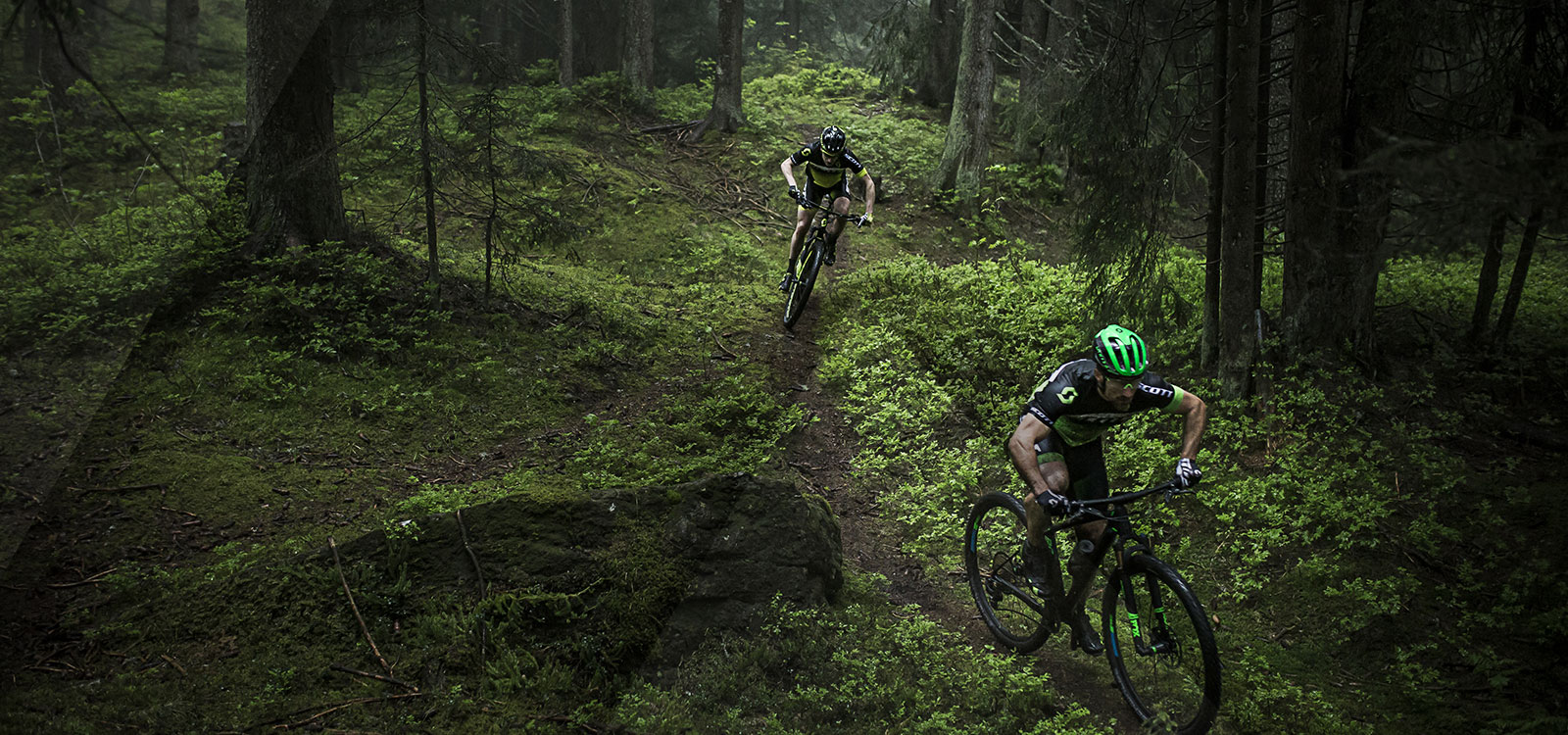 New MTB Collection